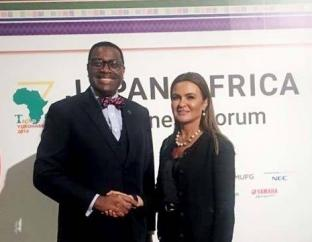 Dr. Sahar Nasr meets with the President of the African Development Bank in Tokyo